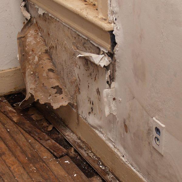 Unabdingbarer Bestandteil der Eigenheimversicherung